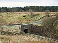 Bridge over Carling Gill - geograph.org.uk - 749047.jpg