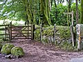 Bridleway from Natsworthy to Jay's Grave - geograph.org.uk - 935826.jpg