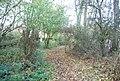 Bridleway through Tinley Lodge Toll - geograph.org.uk - 1575142.jpg