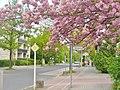 Britz - Quarzweg - geo.hlipp.de - 36185.jpg