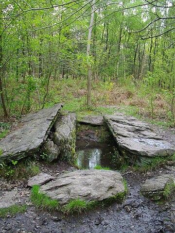 Le Géant  de la forêt de Brocéliande  dans Bretagne