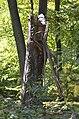 Broken tree 04.jpg