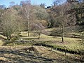 Brook meandering through a valley - geograph.org.uk - 1748864.jpg