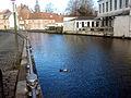 Brugge 2013-02-04 29.jpg