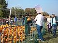 Bucuresti, Romania. Pumpkin Fest. Primul Festival de Halloween din Romania. Oct. 2019. Vrajitoarea vanzand dovleci. DSCN9765.jpg