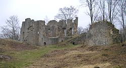 Burg Rauheneck Palas.jpg