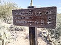 Butcher Jones Trail - Mt. Pinter Loop Trail, Saguaro Lake - panoramio (130).jpg
