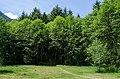 Butterfly Garden - panoramio (1).jpg