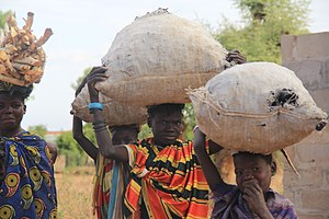 Buvuma District - Women gathering and collecting charcoal from kilns for home use.