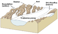 Buzul yeryüzü şekilleri.png