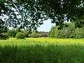 Bydgoszcz - okolice nad Brdą - panoramio.jpg