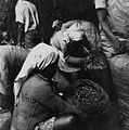 COLLECTIE TROPENMUSEUM Vrouwen bezig met het sorteren van de geoogste koffiebessen TMnr 20014487.jpg