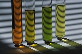 CSIRO ScienceImage 7630 test tubes.jpg