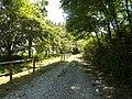 Camminando per la riserva Casalbeltrame 3.jpg