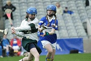 Camogie Irish stick-and-ball team sport played by women