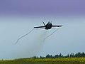Canadian F-18 flyover.jpg