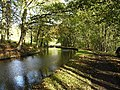 Canal in Autumn - geograph.org.uk - 77252.jpg