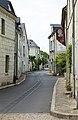 Candes-Saint-Martin R02.jpg