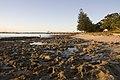 Captain Cooks Landing Place Park - panoramio (5).jpg