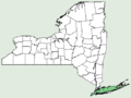 Carex silicea NY-dist-map.png