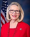 Carol Miller, Official Portrait, 116th Congress.jpg