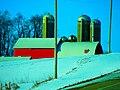 Century Farm - panoramio.jpg