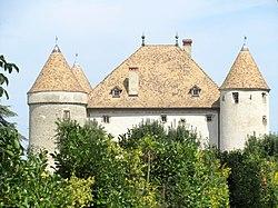 Château de Buffavent 102.jpg