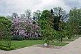 Chaumont-sur-Loire (Loir-et-Cher) (14081490753).jpg