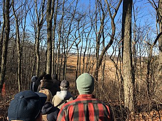 Cheesequake State Park - Participants in a First Day Hike in the park in 2017 walk through the hardwood forest above and see the marshes below