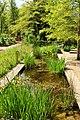 Chelsea Physic Garden 15052013 092.jpg
