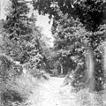 Chemin de la garenne, Bélesta, 9 octobre 1897 (3685989293).jpg