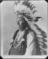 Chief Joseph - NARA - 523603.tif