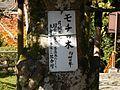 Chikubu Island Hougonji DSCN1928.jpg