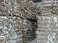 Chojnow 37 papier.jpg