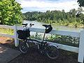 Clackamas River (33935458513).jpg
