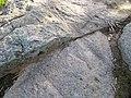 Close-up of the granite at The Rocks (2).jpg