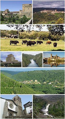 Collage provincia de Salamanca.jpg