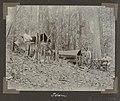 Collectie NMvWereldculturen, RV-A102-1-120, 'Kamp op den Cotticaberg. Sullie, C.H. de Goeje, A. Franssen Herderschee'. Foto- G.M. Versteeg, 1903-1904.jpg