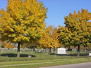 Concordia Cemetery (Buffalo, New York) - Image: Concordia Cemetery 2