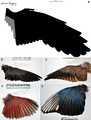 Confuciusornis wing.PNG