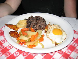 Costa Rican Cuisine Dinner