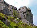 Cow and Calf Rocks (2551199521).jpg