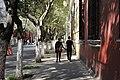 Coyoacan walk.jpg