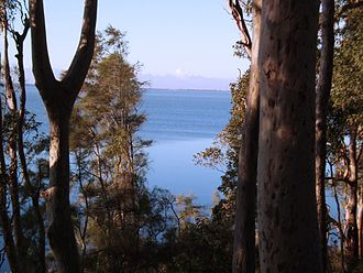 Tuggerah Lake - Tuggerah Lake as viewed from Craigie Park in Kanwal. The Entrance is also visible in the distant background.