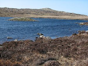 Macaulay family of Lewis - The remains of Dùn Anlaimh, a crannog on Coll, in 2006.