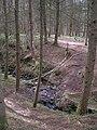 Crossing The Burn - geograph.org.uk - 775847.jpg