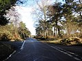 Crossroads, on Little Haldon - geograph.org.uk - 1715940.jpg