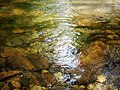 Crystal clear Water stream.jpg