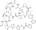 Cyclothiazomycin-A.png