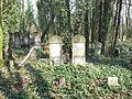 Czestochowa cmentarz zydowski 10.jpg